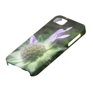 iPhone 5 covering of purple prick flower iPhone SE/5/5s Case
