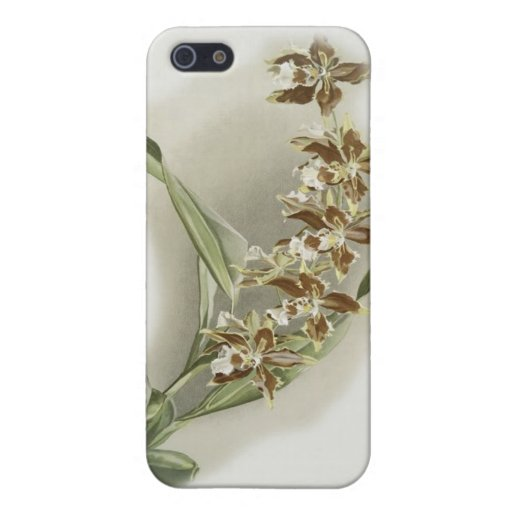 iPhone 5 Covers - Vintage Orchids