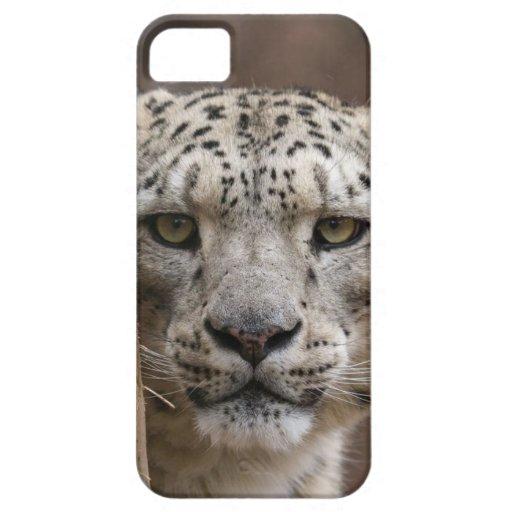 iphone 5 cubiertas - cubierta de Iphone 5 del leop iPhone 5 Case-Mate Fundas