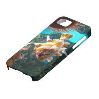 iPhone 5 de la caja de la casamata de los pescados iPhone 5 Cárcasa