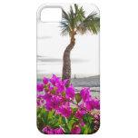 iPhone 5 de la playa de Maui iPhone 5 Carcasas