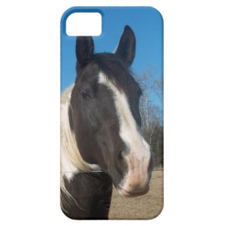 iPhone 5 Horse Case iPhone 5 Covers
