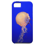 iphone 5 Jellyfish Case iPhone 5 Cases