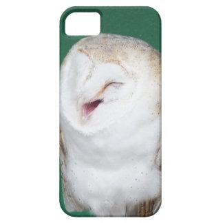 iphone 5 phone case Barn Owl photo