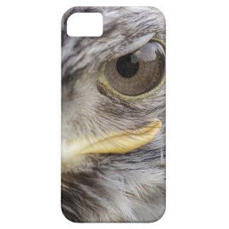 iPhone 5 revestimiento protector ojo de halcón iPhone 5 Funda