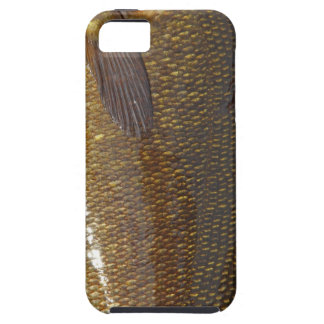 iPhone 5 Vibe Case (SMALLMOUTH BASS) iPhone 5 Case