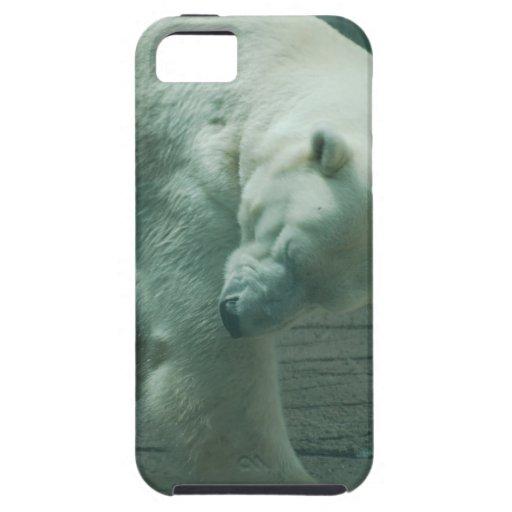 iphone 5 vibe QPC template iPhone 5 C - Customized iPhone 5 Case