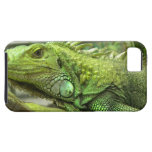 iphone 5 vibe QPC template iPhone 5 C - Customized iPhone 5 Cover