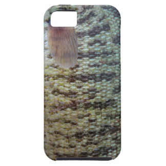 iPhone 5 Vibe (Smallmouth Bass 2) iPhone 5 Cover