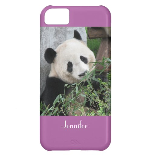 iPhone 5c Case Giant Panda Radiant Orchid Bkgnd