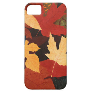 iPhone 5Case-MateBarelyThere de las hojas de otoño iPhone 5 Cobertura