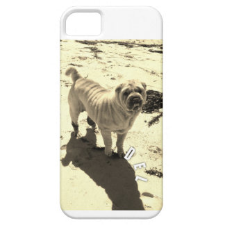 iphone 5s case case for the iPhone 5
