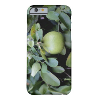 iPhone 6/6s, Barely There Photograph OF Early Oran Barely There iPhone 6 Case