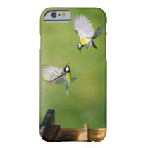 iPhone 6/6s, birds template phone case
