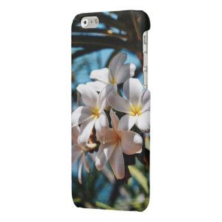 iPhone 6/6s Plumeria Case