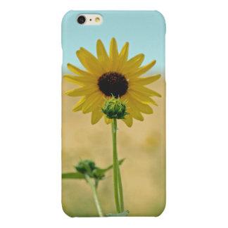 iPhone 6/6s Plus Sunflower Glossy Finish Case