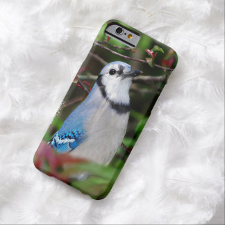iPhone 6 Blue Jay Case