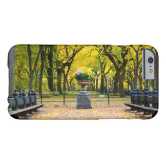 iPhone 6 Case - Central Park in Autumn, New York