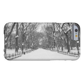 iPhone 6 Case - Central Park in Winter, New York