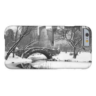 iPhone 6 Case - Central Park New York in Winter