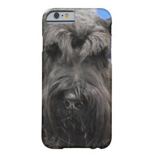 iPhone 6 case - Customized