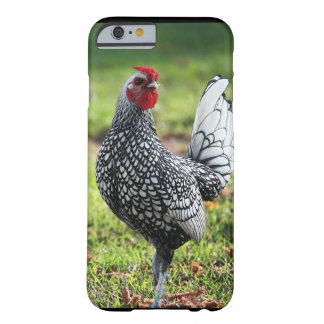 iPhone 6 case, Rooster, Barely There iPhone 6 Case
