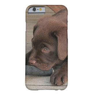 iPhone 6 case with chocolate Labrador retriever
