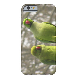 iPhone 6 case with curious parakeets