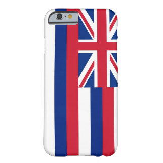 iPhone 6 case with Flag of Hawaii