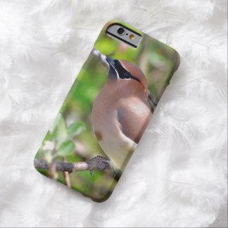 iPhone 6 Cedar Waxwing Case
