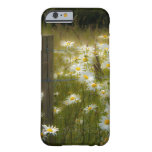 iPhone 6 DaisiesiPhone caseBeautiful 6 caseBar