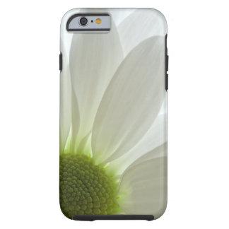 iPhone 6 de los pétalos de la margarita blanca