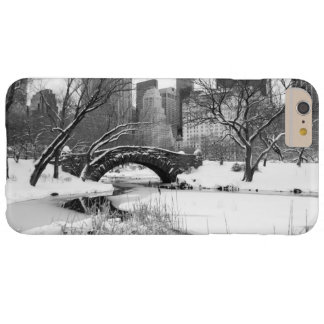 iPhone 6 Plus Case - Central Park Winter, New York