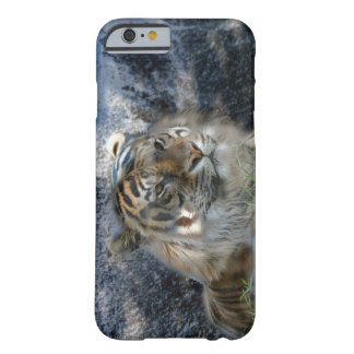 Iphone 6 Plus Cell Case