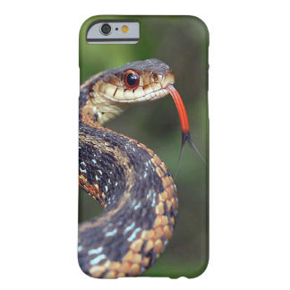 iPhone 6 Snake Case