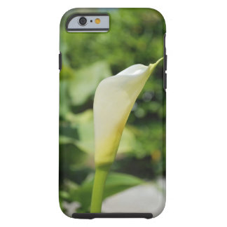 IPhone 6 white calla shell Tough iPhone 6 Case