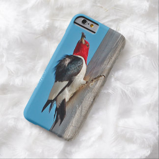 iPhone 6 Woodpecker Cases