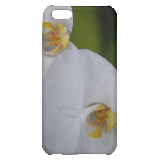 iphone blanco 4 de la orquídea