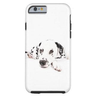 iPhone Case 6/6s Dalmatiner