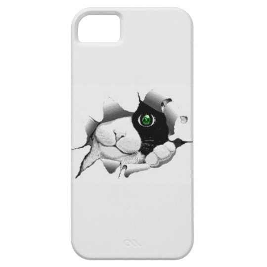 iPHONE CASE CHRISTMAS GREEN EYED CAT
