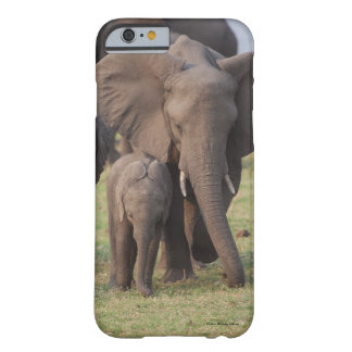 iPhone case featuring young and baby elephants.