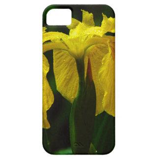 iPhone Case-I know how the Iris Felt iPhone 5 Case
