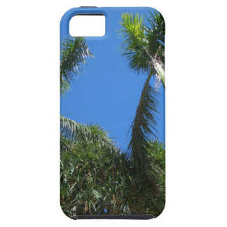 iPhone Case - Palm Tree iPhone 5 Covers