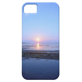 iPhone case with an image of the Night Sky &Marsh. iPhone 5 Case