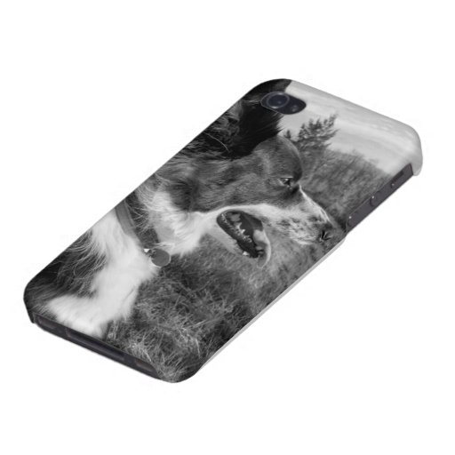 iPhone Case with Border Collie in B&W