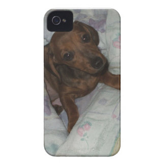 iphone case with puppy