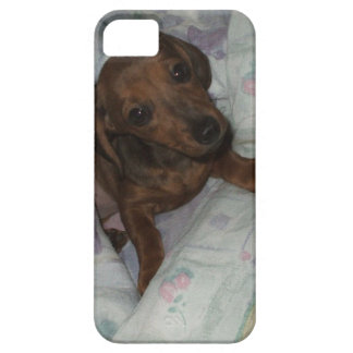 iphone case with puppy iPhone 5 case