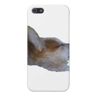 iPhone Cover, Red Dog Sleeping iPhone SE/5/5s Case