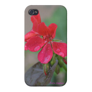 Iphone cover with red blooms