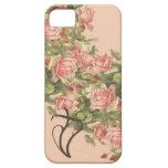 iPhone cristiano 5 de los rosas de Klein iPhone 5 Fundas